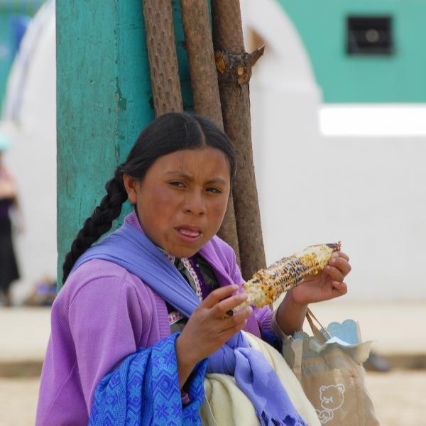 Rencontres en terre Maya - 15 jours : voyage solidaire Vision du Monde