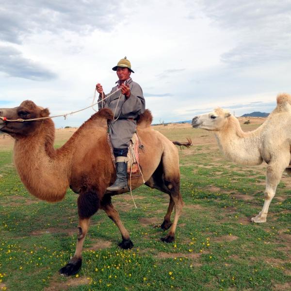 Steppes mongoles et désert de Gobi : voyage solidaire Vision du Monde