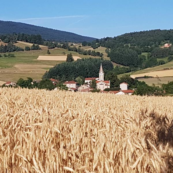 France - Randonnée et rencontres dans les Monts du Pilat : voyage solidaire Vision du Monde