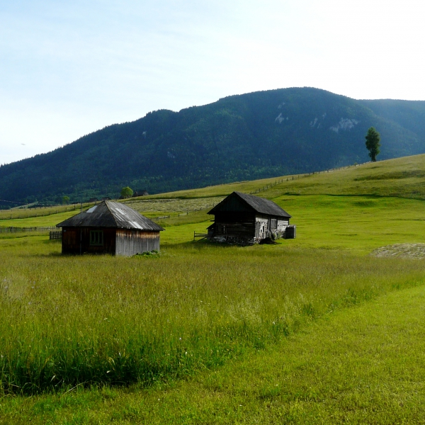 Entre culture et traditions, de la Transylvanie à la Moldavie : voyage solidaire Vision du Monde