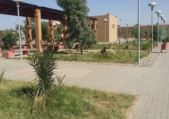 Continuité de la mise en place des espaces verts dans le village d'Hassilabiad (Erg Chebbi) - photo 4 - Vision du Monde