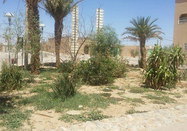 Continuité de la mise en place des espaces verts dans le village d'Hassilabiad (Erg Chebbi) - photo 1 - Vision du Monde