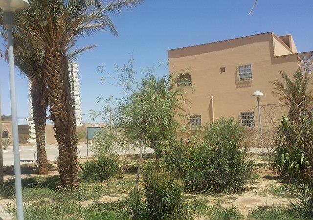 Continuité de la mise en place des espaces verts dans le village d'Hassilabiad (Erg Chebbi) - photo 3 - Vision du Monde