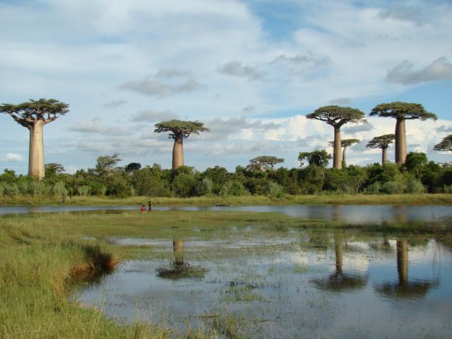 Mosaïque malgache d'Est en Ouest - 21 jours : voyage solidaire Vision du Monde