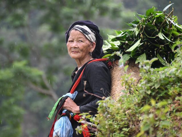 Ethnies du Tonkin : voyage solidaire Vision du Monde