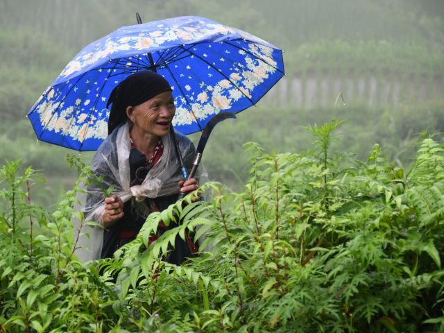 Extension Nord Vietnam : voyage solidaire Vision du Monde