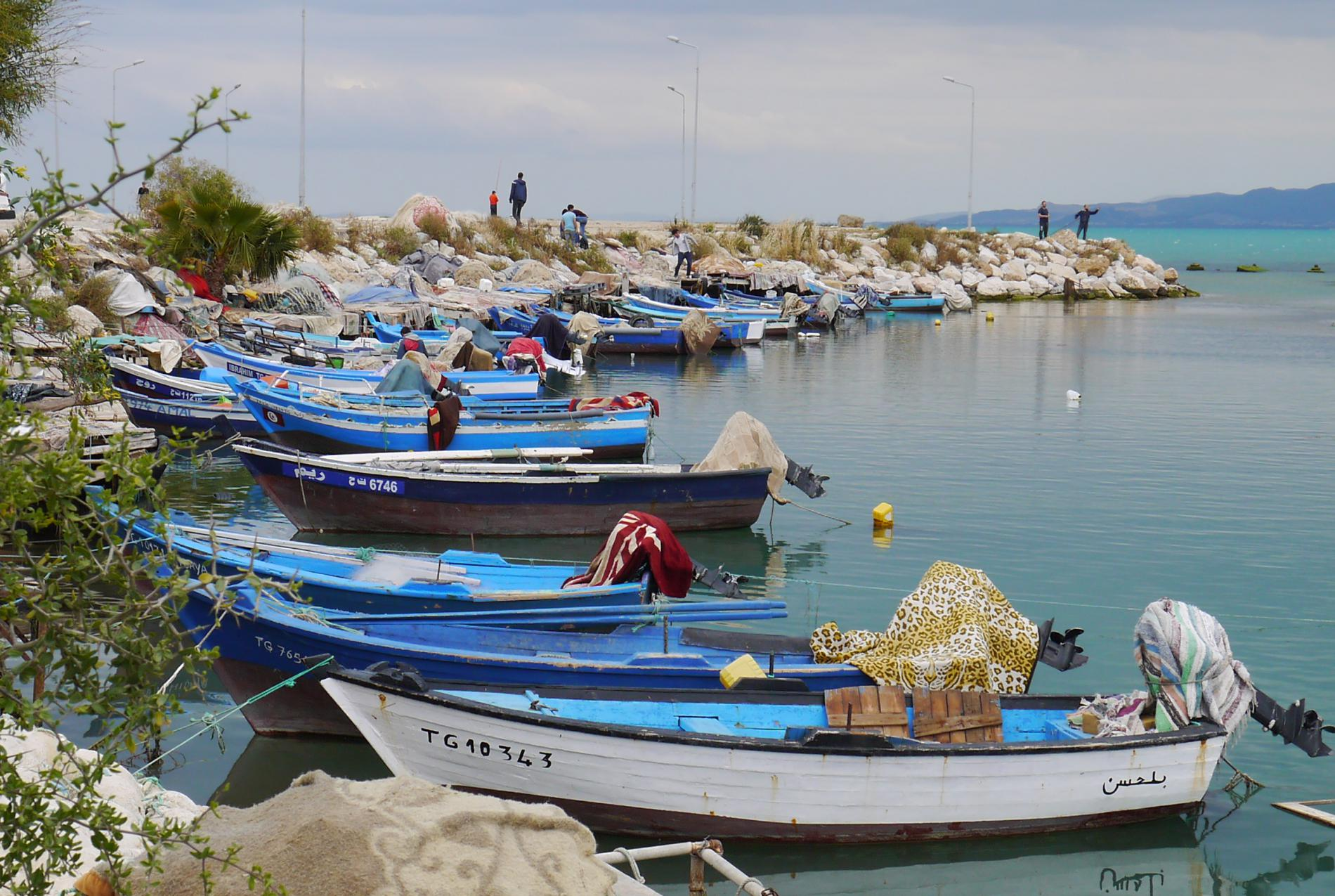 Tunisie : Nos voyages solidaires