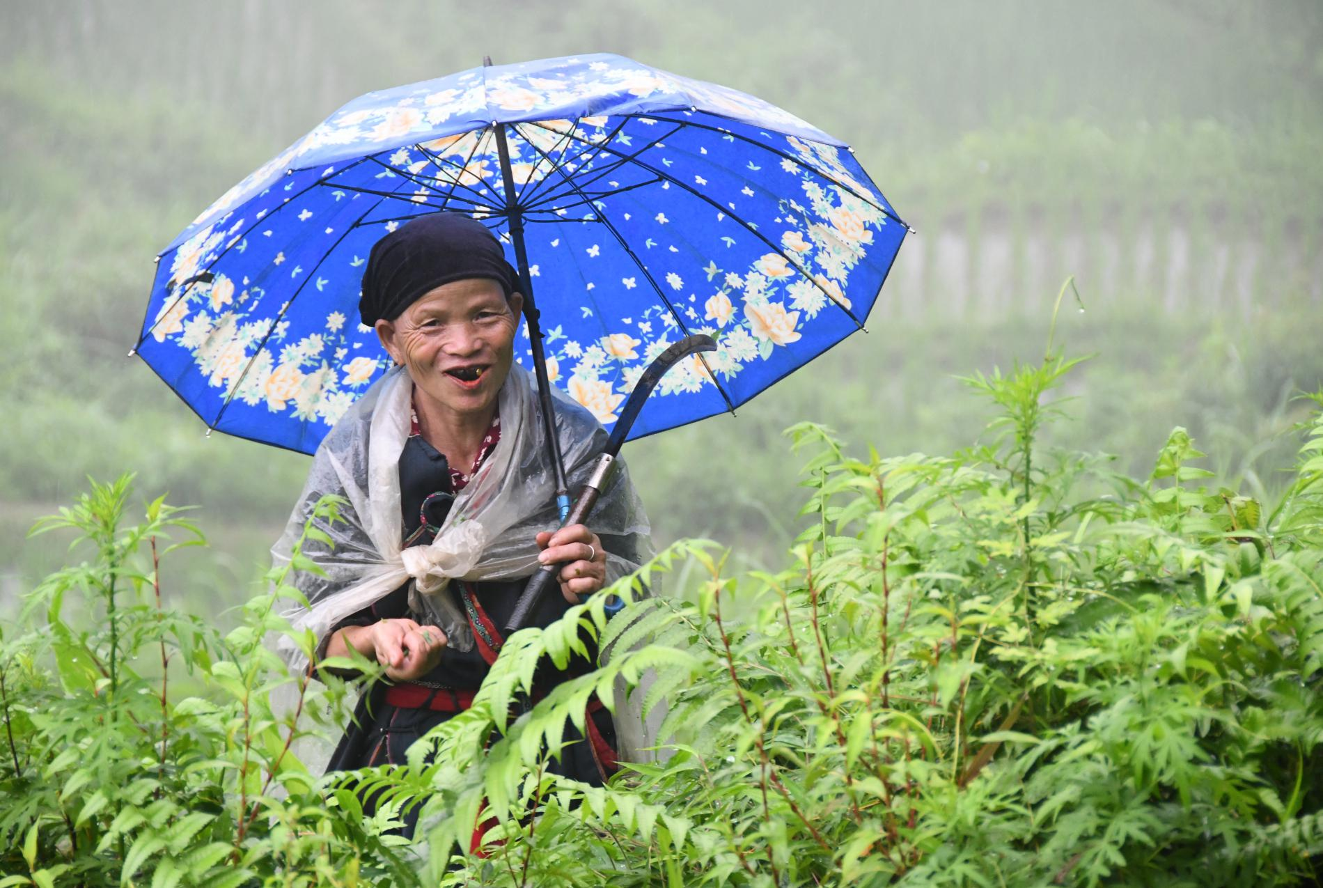 Vietnam : Nos voyages solidaires