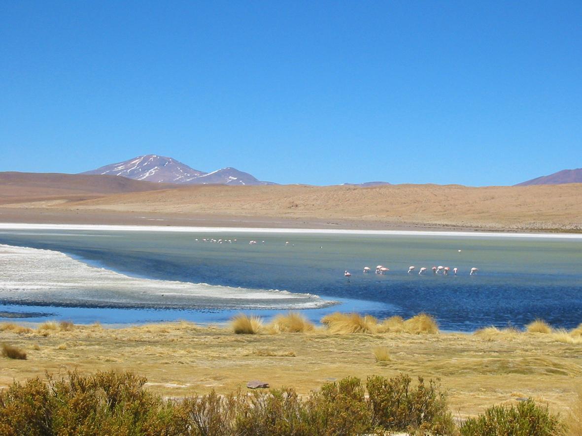 Voyage solidaire Bolivie : Vision du Monde - Photo 1