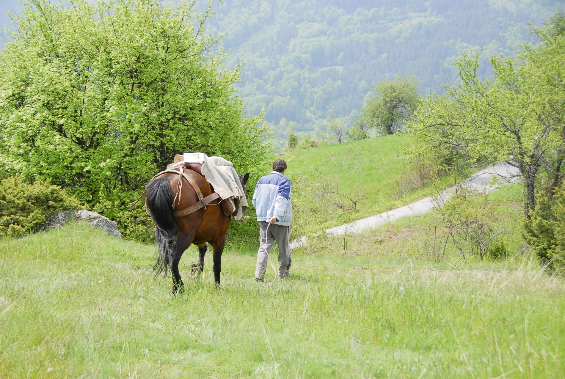 Voyage solidaire Bulgarie : Vision du Monde - Photo 3