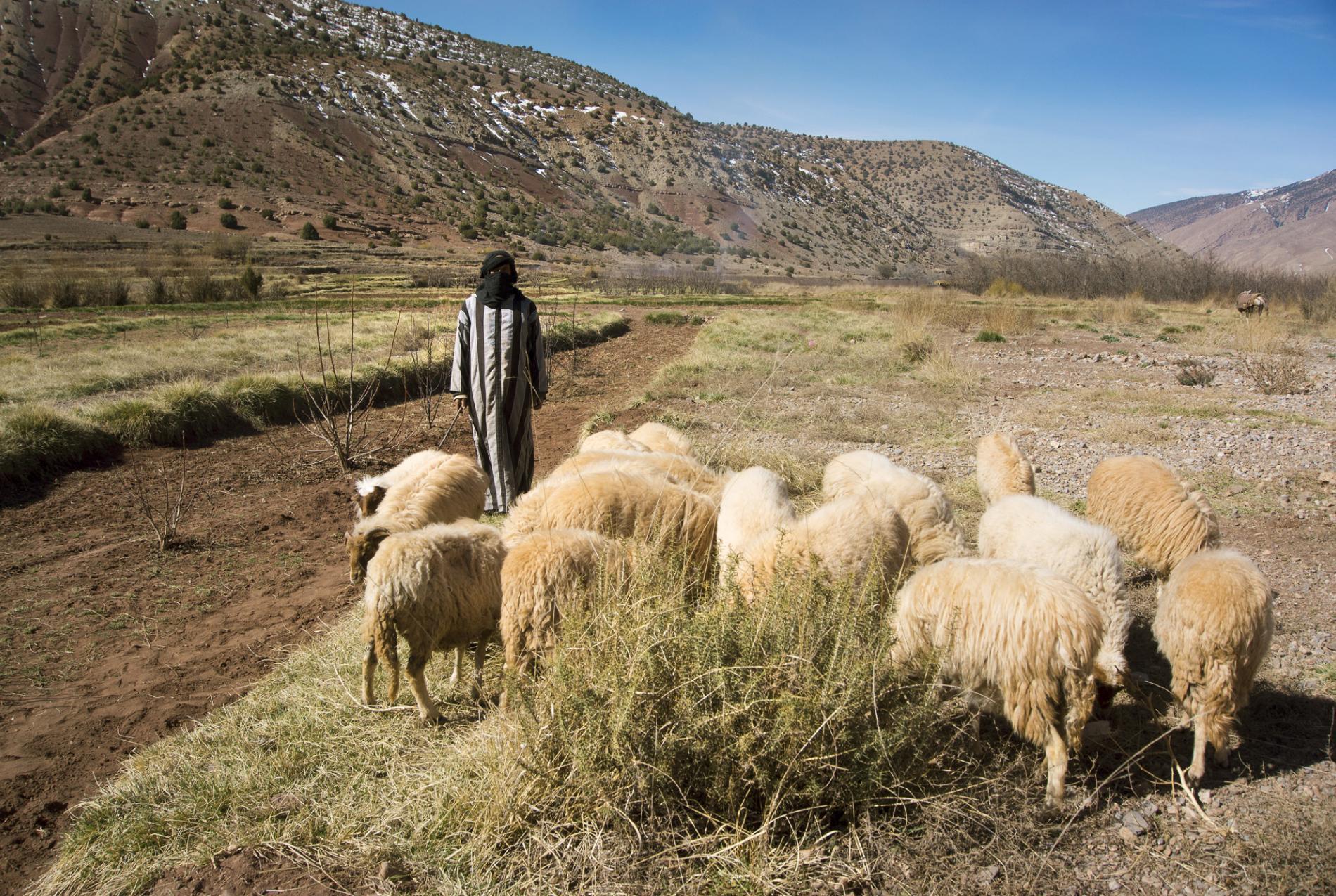 Voyage solidaire Maroc : Vision du Monde - Photo 8