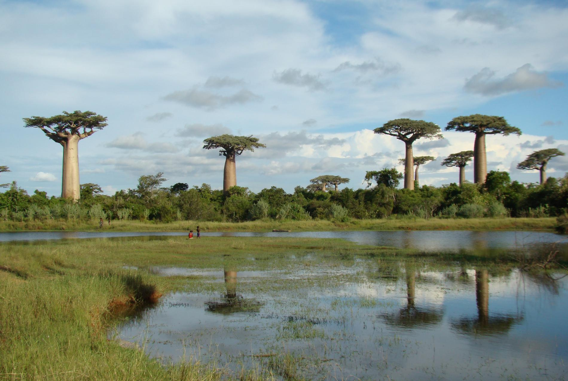Voyage solidaire Madagascar : Vision du Monde - Photo 1