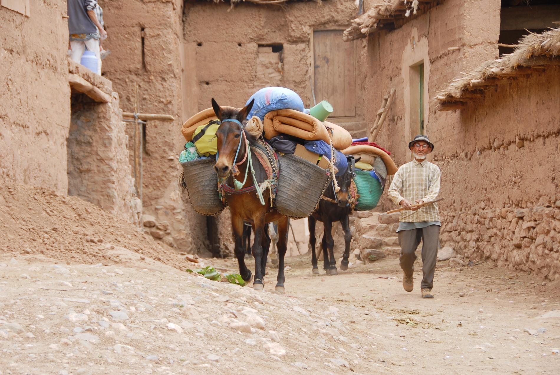 Voyage solidaire Maroc : Vision du Monde - Photo 1