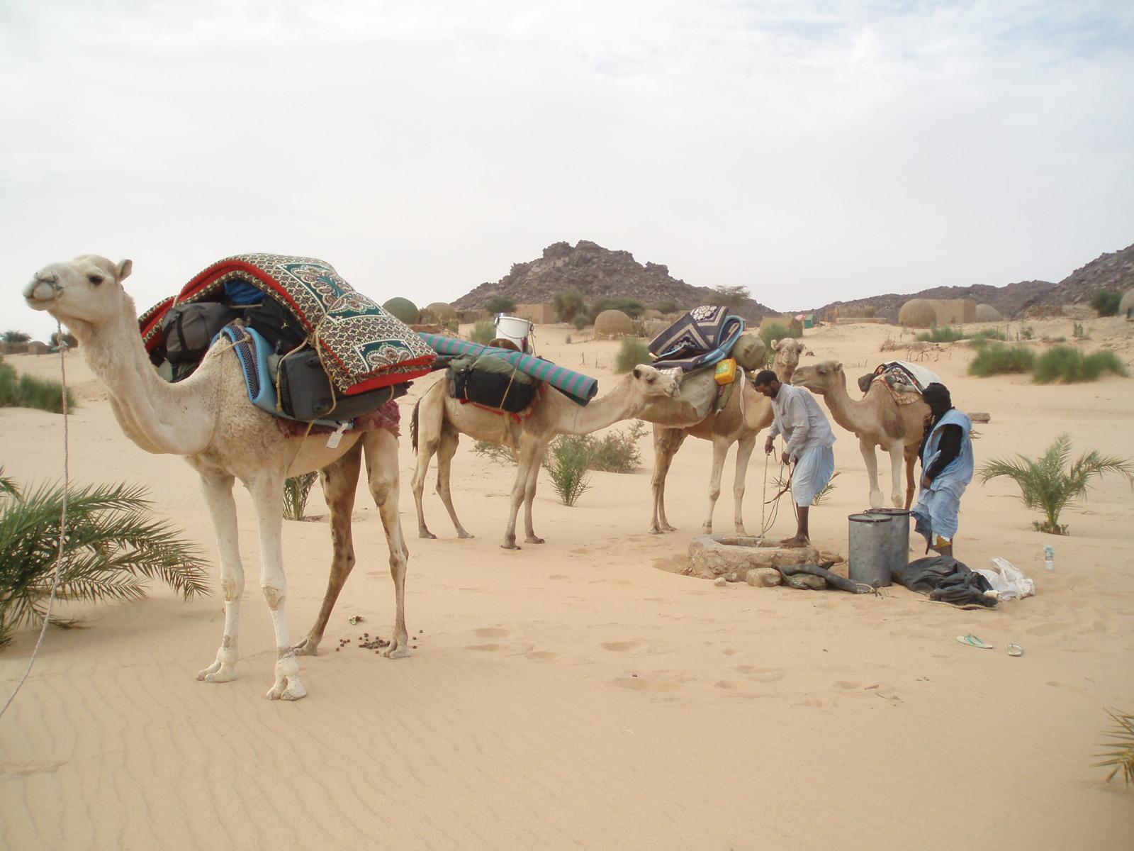 Voyage solidaire Mauritanie : Vision du Monde - Photo 1