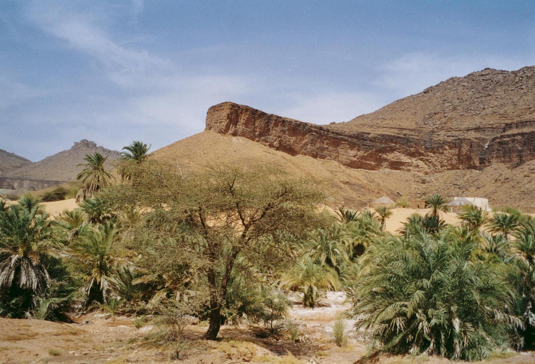 Voyage solidaire Mauritanie : Vision du Monde - Photo 6