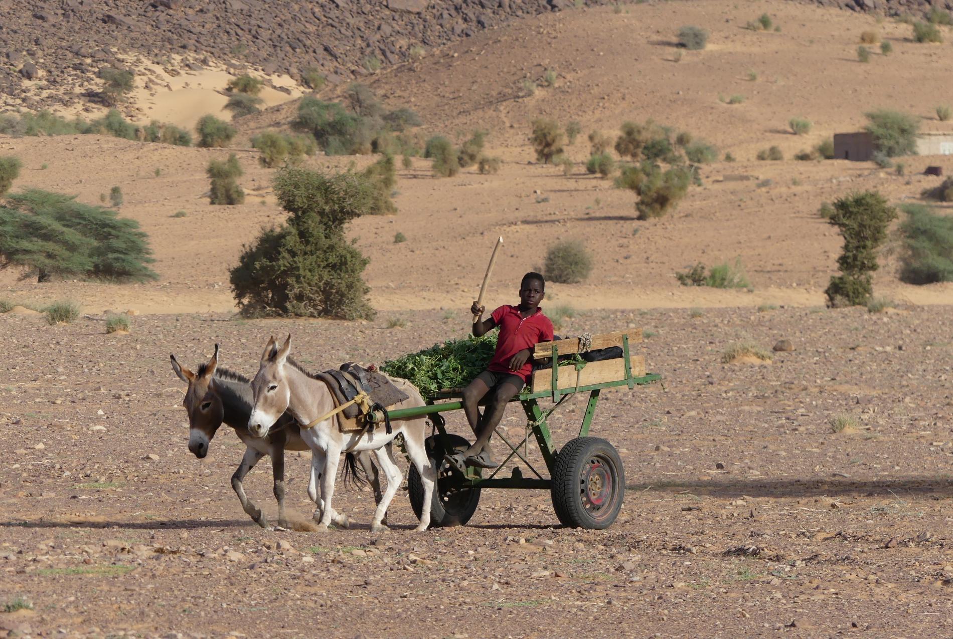 Voyage solidaire Mauritanie : Vision du Monde - Photo 12