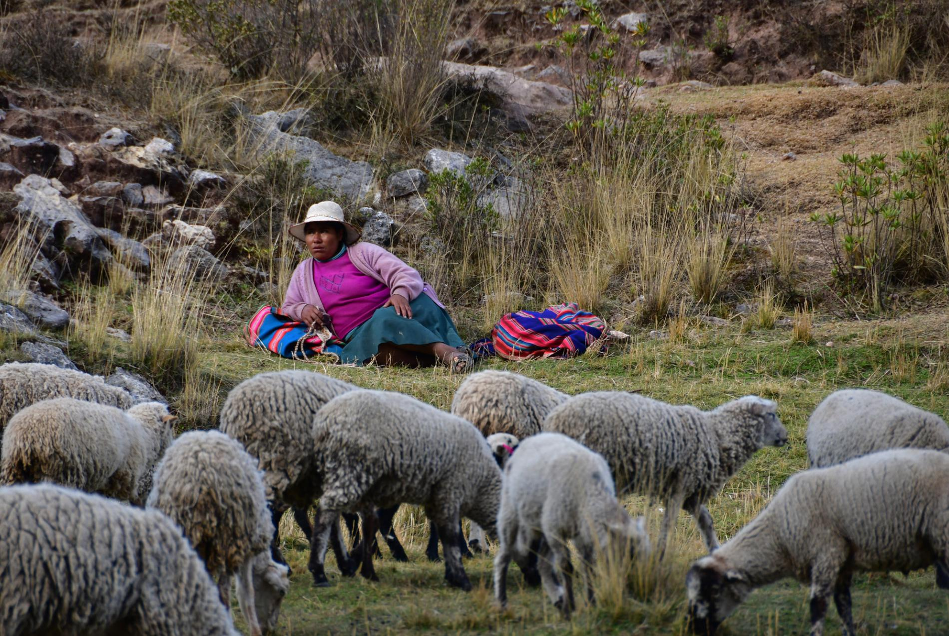 Voyage solidaire Pérou : Vision du Monde - Photo 12