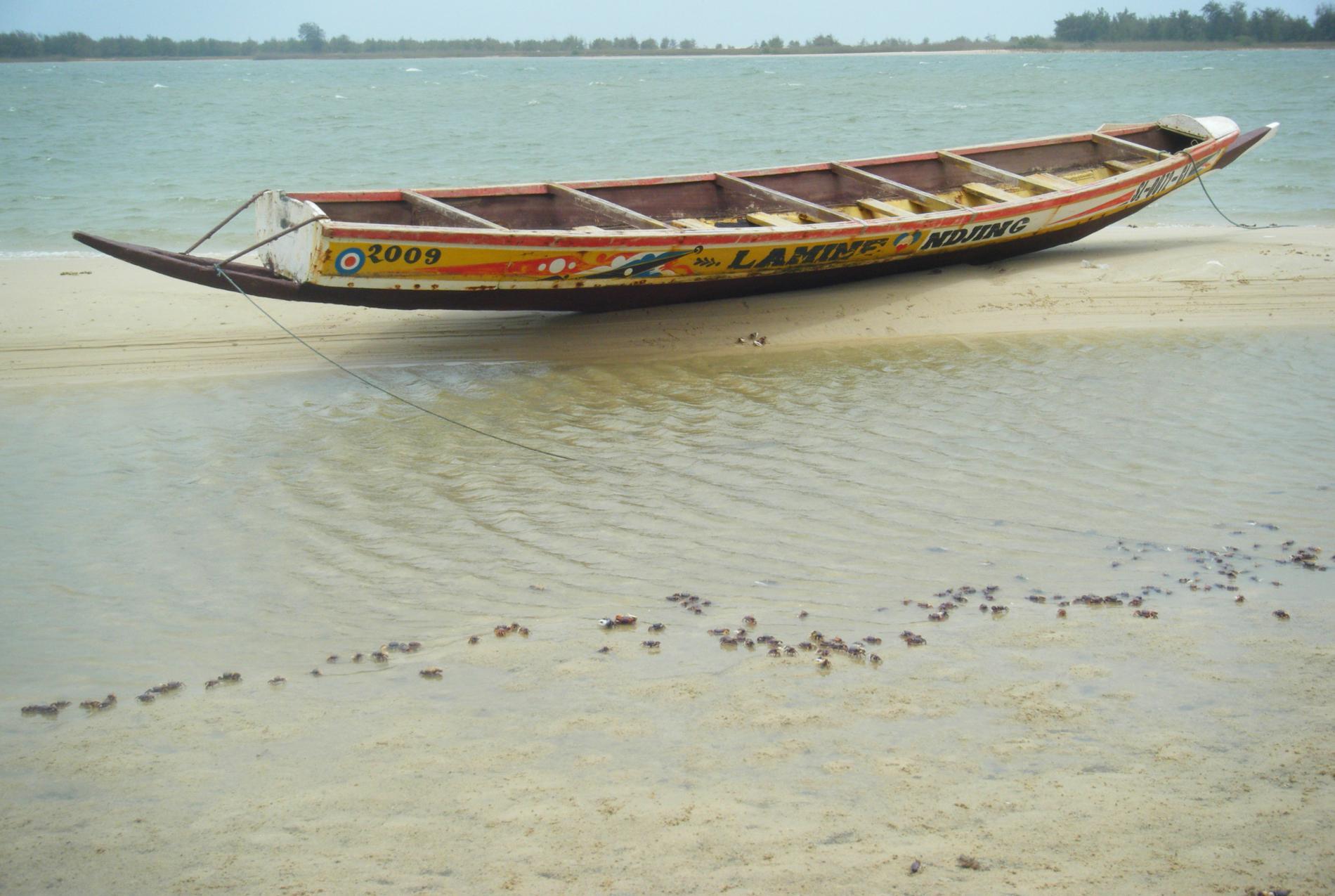 Voyage solidaire Sénégal : Vision du Monde - Photo 4