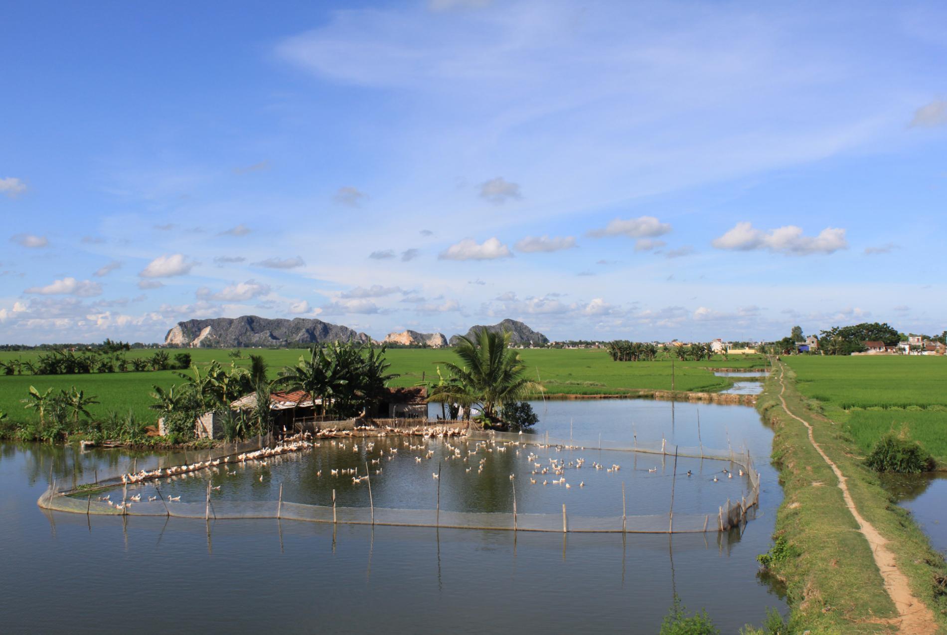 Voyage solidaire Vietnam-Cambodge : Vision du Monde - Photo 4