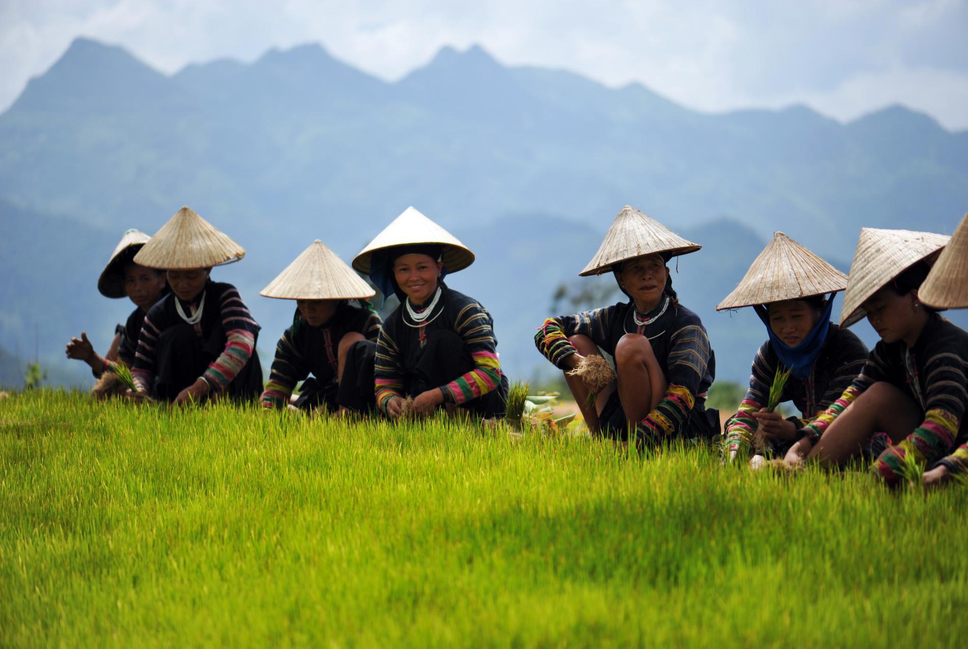 Voyage solidaire Vietnam : Vision du Monde - Photo 5