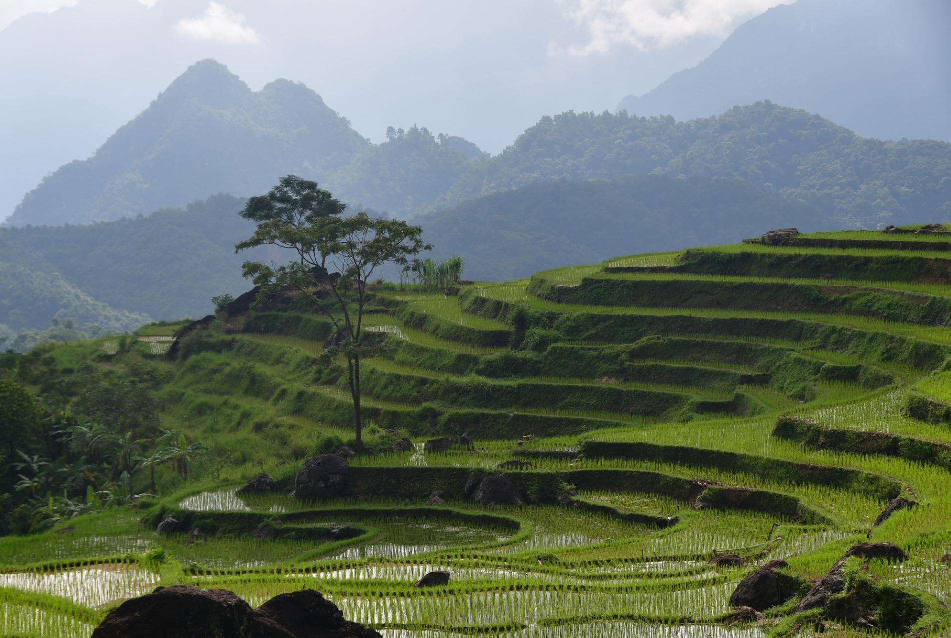 Voyage solidaire Vietnam : Vision du Monde - Photo 2
