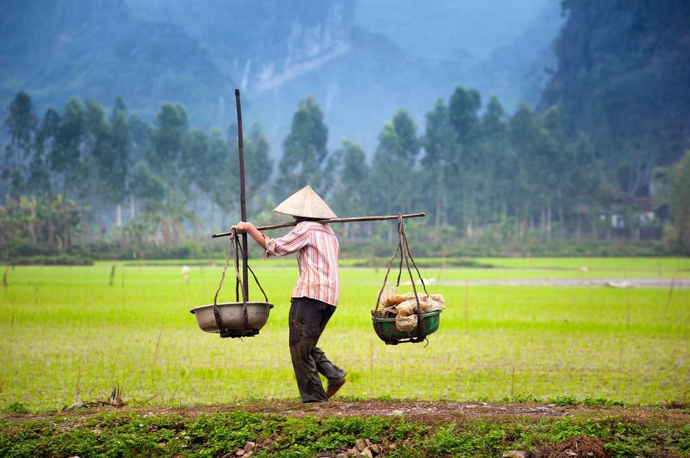 Voyage solidaire Vietnam : Vision du Monde - Photo 4