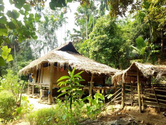 Action solidaire par Vision du Monde : Mise en place d'un système d'irrigation pour la culture de mandariniers
