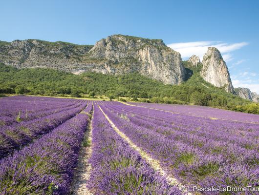 France - Diois, grandeur nature spécial famille : voyage solidaire Vision du Monde