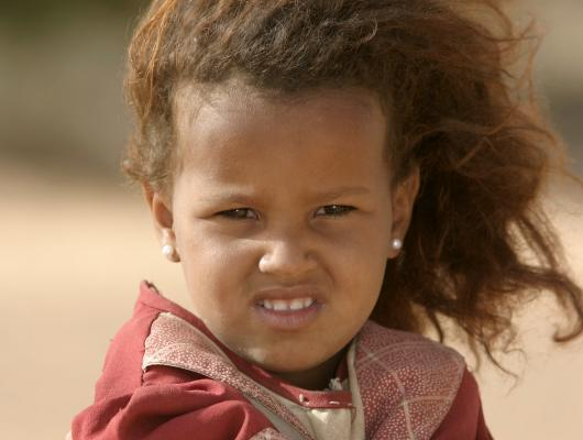 Dunes et Oasis de l'Adrar : voyage solidaire Vision du Monde